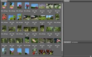 Screen Shot 2014-09-21 at 8.37.09 PM