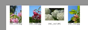 Screen Shot 2014-10-06 at 7.40.25 PM